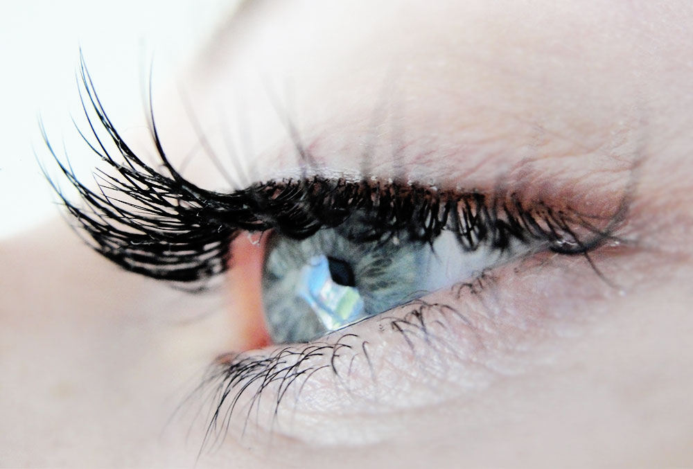 Lash Extensions At Benito Brow Bar South Shields Beautysauce