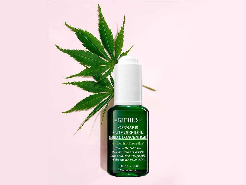 kiehls cannabis salvia seed oil herbal concentrate